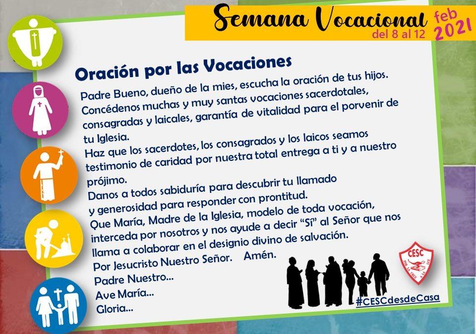 Semana Vacacional del 8 al 11 de febrero